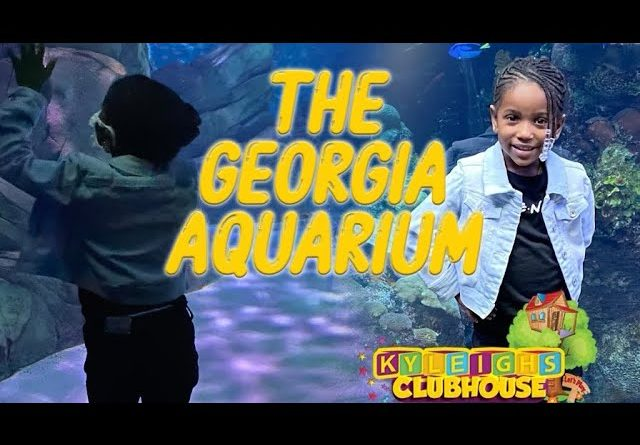 GA Aquarium |Things to do in GA| BEST DOLPHIN SHOW EVER!!!!!
